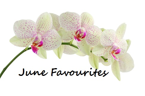 beautiful-wallpapers-of-orchid-flower1